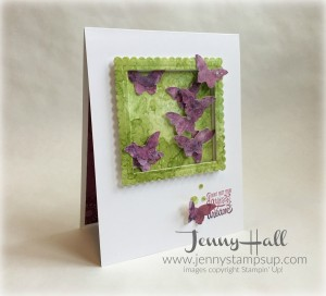 Designer Tee stamps with butterlies by Jenny Hall www.jennystampsup.com