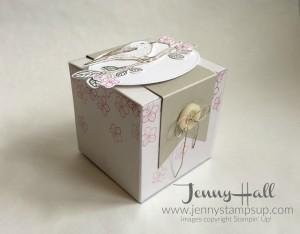 Gift Box with Best Birds by Jenny Hall www.jennystampsup.com