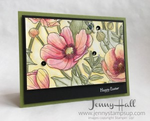 Inside the Lines DSP with Watercolor Pencils by Jenny Hall www.jennystampsup.com