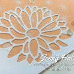 Online Class by Jenny Hall www.jennystampsup.com