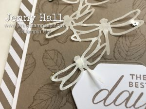 Birthday Blossoms & Detailed Dragonfly Thinlits by Jenny Hall at www.jennystampsup.com