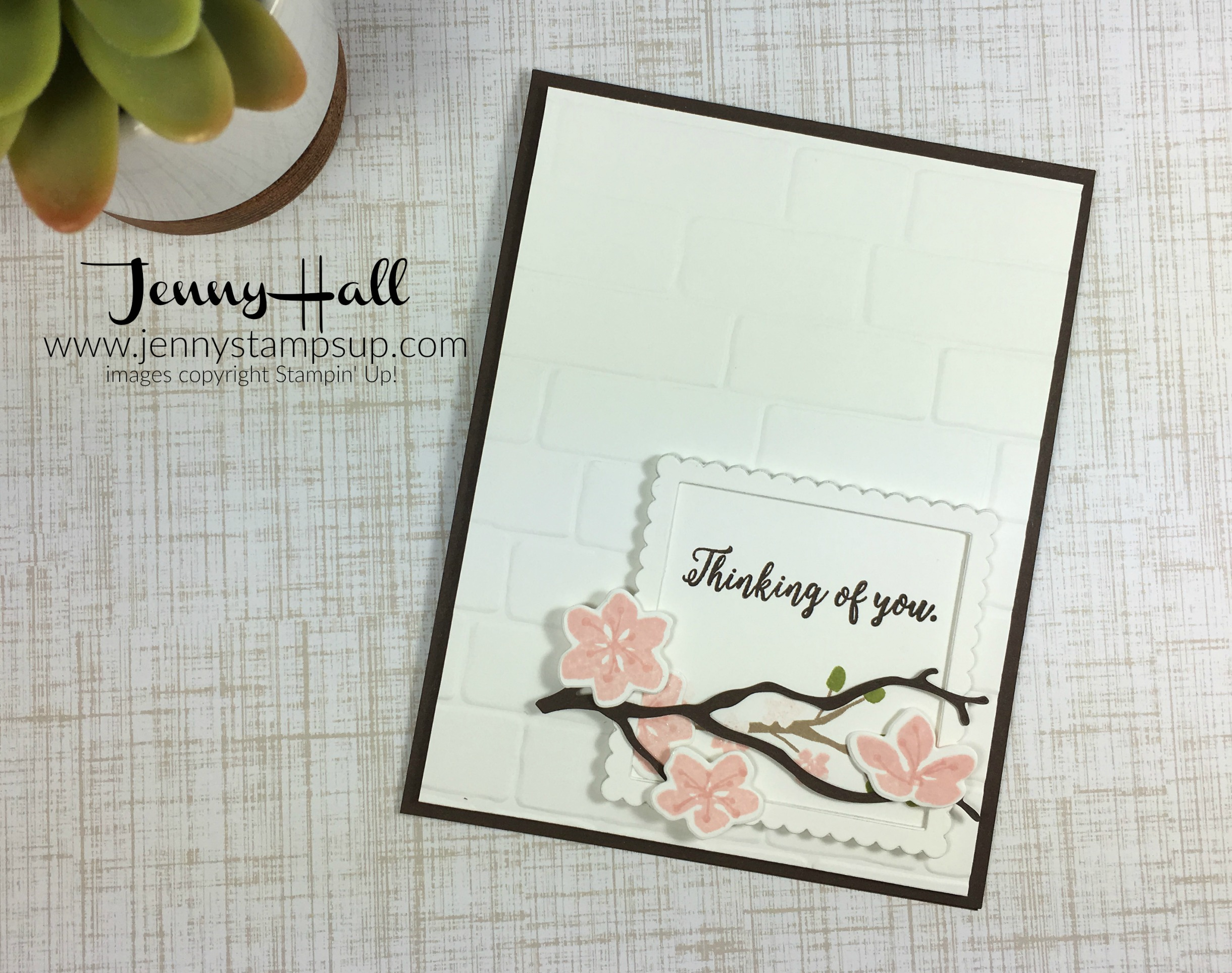 framed sentiment with colorful seasons by Jenny Hall www.jennystampsup.com