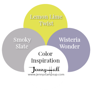 New In Color Combos by Jenny Hall at www.jennystampsup.com
