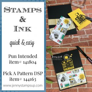Pun Intended & Pick A Pattern DSP by Jenny Hall at www.jennystampsup.com