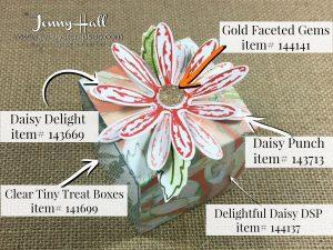 Daisy Treat Box 1c