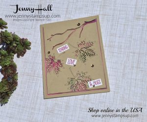 Inlay die cuts over Glossy paper with Stampin Up products with Jenny Hall at www.jennystampsup.com