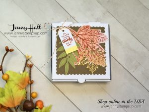 September Paper Pumpkin alternative project by Jenny Hall of www.jennystampsup.com for cardmaking, papercraft gift giving, tutorial videos and more!