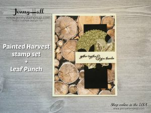 Country elegance style using Painted Harvest Bundle by Jenny Hall at www.jennystampsup.com for cardmaking, scrapbooking, papercraft gift giving, video tutorials and more!