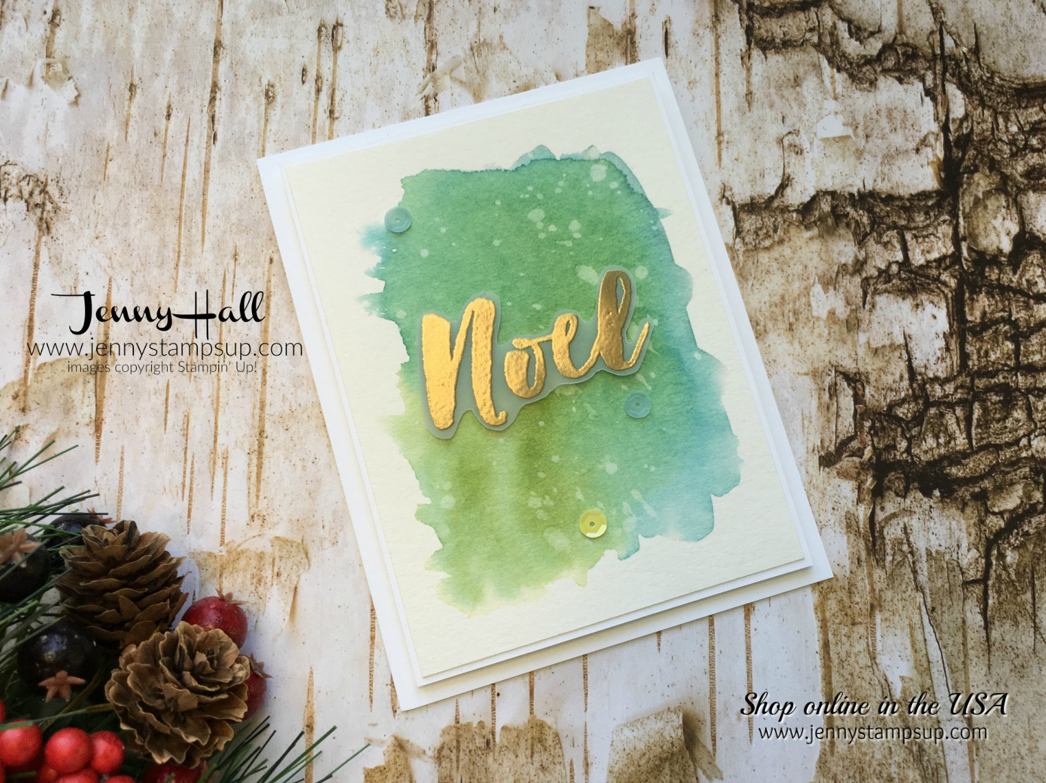 Watercolor Wash tutorial by Jenny Hall at www.jennystampsup.com for cardmaking, scrapbooking, video tutorials and more!