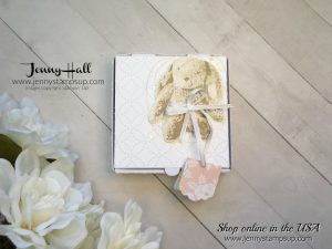 2018 OnStage Display Stamper Blog Hop cards by Jenny Hall at www.jennystampsup.com