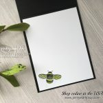 Dragonfly Dreams card by Jenny Hall at www.jennystampsup.com for cardmaking, scrapbooking, video tutorials and more