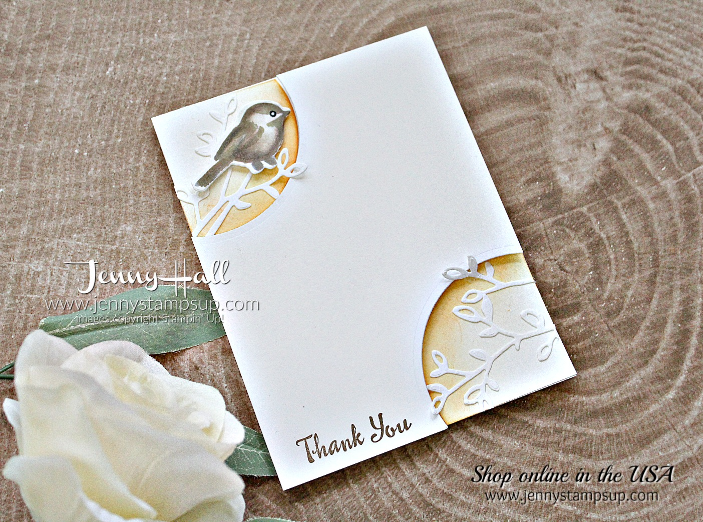 Morning Sun Petal Palette card by Jenny Hall at www.jennystampsup.com for #stampinup #cardmaking #cascards #cleanandsimplecards #jennystampsup #jennyhallstampinup #jennyhalldesign #cardmakingchallenge #cardmakingtechnique #videotutorial #cardmakingtechnique #scrapbooking and more!