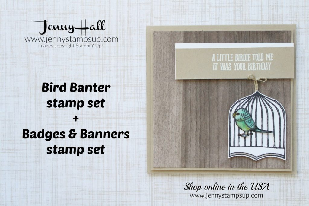 Bird Banter Masculine card by Jenny Hall for the Paper Adventures team blog hop at www.jennystampsup.com for #stampinup #cardmaking #jennystampsup #jennyhallstampinup #jennyhalldesign #scrapbooking #stamping and more!