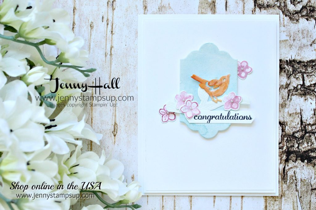 Die cutting watercolor paper by Jenny Hall at www.jennystampsup.com for #cardmaking #stampinup #diecuts #jennystampsup #jennyhalldesign #jennyhall #cardmaking #youtuber #cascards #cleanandsimplecards #videotutorial #papercraft #stamping #paperembossing #watercolorpainting