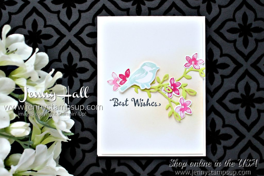 Spring color card with Petal Palette for Color Throwdown by Jenny Hall at www.jennystampsup.com for #cardmaking #stamping #handstamped #petalpalette #fruitycolors #cascards #cleanandsimplecards #stampinup #jennyhalldesign #jennystampsup #jennyhallstampinup #cardmakingvideos #colorthrowdown #softcoloring #inkblending #ombre #papercraft
