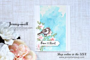 Warm thoughts card by Jenny Hall at www.jennystampsup.com for #cardmaking #cardmakingvideos #stampinup #jennyhalldesign #jennyhall #jennystampsup #jennyhallstampinup #halljenny #cardmaking#stampinup #stamping #papercraft #rubberstamp #petalpalette #cardmakingdesign #cardmakingtechnique #watercolor #inksmooshing