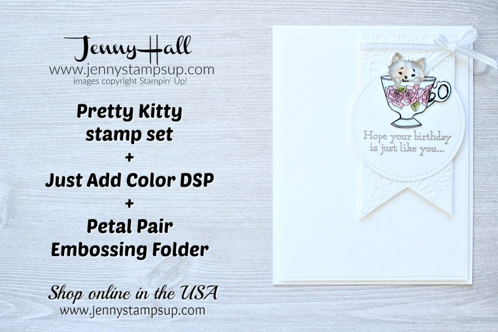Kitten in a teacup card created by Jenny Hall at www.jennystampsup.com for #cardmaking #stamping #stampinup #coloring #cascards #cleanandsimplecards #justaddcolordsp #prettykitty #jennyhalldesign #jennystampsup #jennyhall #youtuber #videotutorial #crafts #lifestyle
