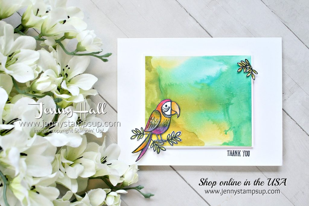 March Creating Kindness Design Team Blog Hop and Video Hop created by Jenny Hall at www.jennystampsup.com for #cardmaking #stamping #create #crafts #cardmakingtechnique #birdbanter #parrot #stampinblends #glossywhitepaper #glossywhite #fussycutting #stampinup #jennyhalldesign #jennyhall #jennystampsup #jennyhallstampinup #cascards #cleanandsimplecards #whitespace #youtuber #videotutorial #ckdt #creatingkindness #creatingkindnessbloghop #bloghop #videohop #crafts #kidfriendlycraft #lifestyle #watercolorpainting #thankyoucard