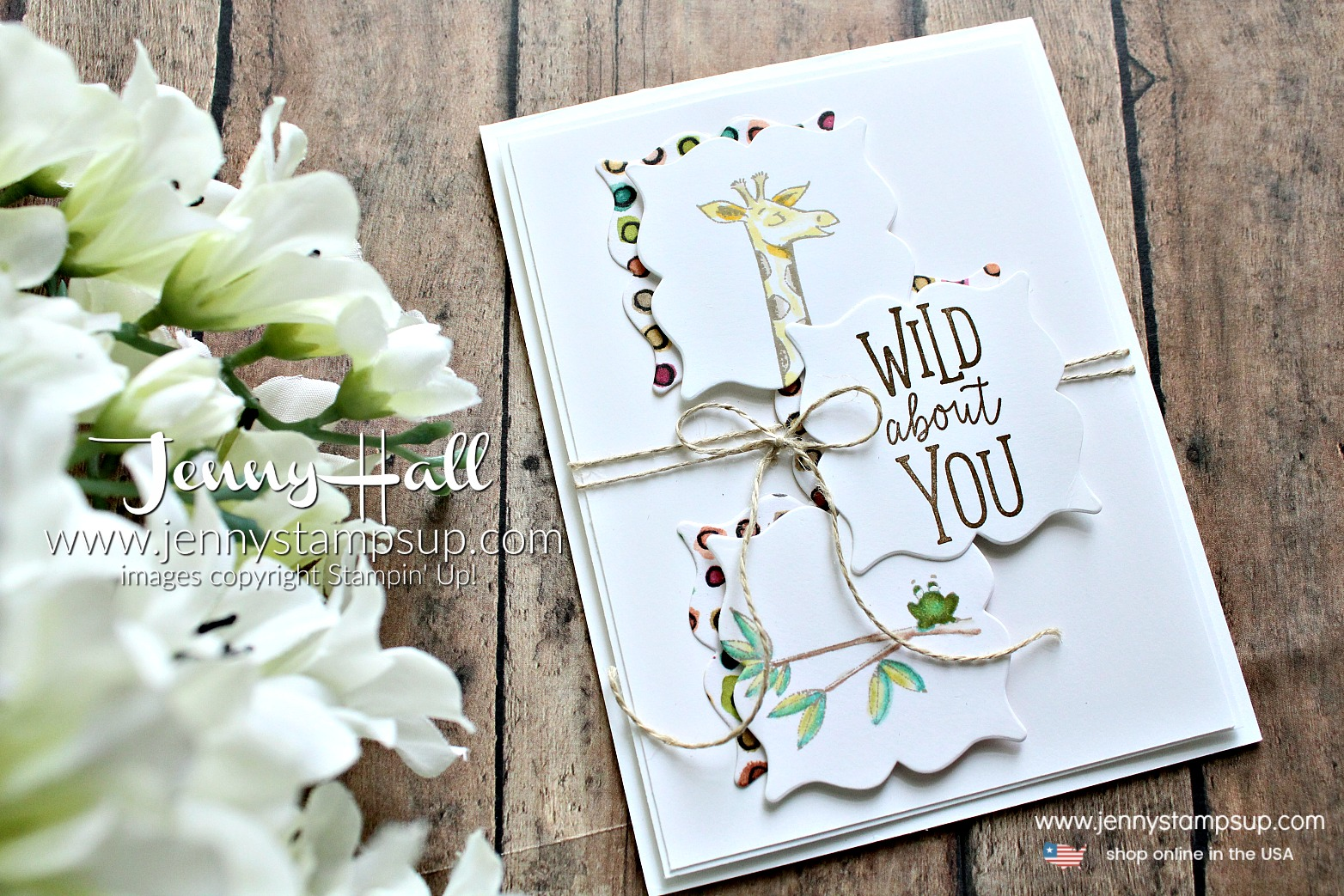 Animal Outing card created by Jenny Hall at www.jennystampsup.com for #cardmaking #stamping #crafts #stampinup #jennyhall #jennyhalldesigns #jennystampsup #animaloutingstampset #cascards #cleanandsimplecards #giraffe #rubberstamp #handmade #lifestyle #diy