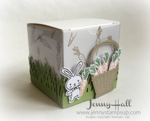 Basket Bunch 3D box by Jenny Hall www.jennystampsup.com