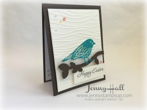 Best Birds by Jenny Hall www.jennystampsup.com
