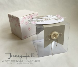 Decorated Gift Box with Best Birds by Jenny Hall www.jennystampsup.com