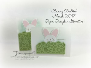 Paper Pumpkin MARCH 2017 by Jenny Hall www.jennystampsup.com
