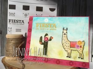 Birthday Fiesta with a Llama